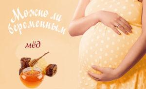 Мед при беременности на поздних сроках польза и вред