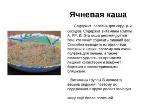 Ячневая крупа польза и вред для организма человека