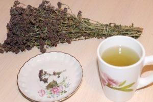 Чай с душицей польза и вред для мужчин