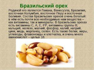 Бразильский орех польза и вред для организма