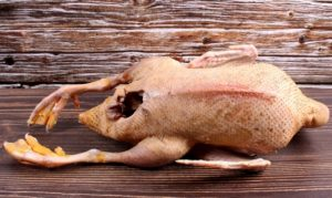 Утка польза и вред для организма человека
