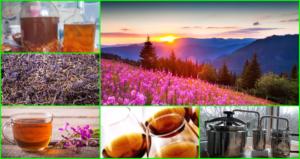 Настойка на иван чае на самогоне польза и вред