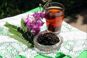 Иван чай с таволгой польза и вред
