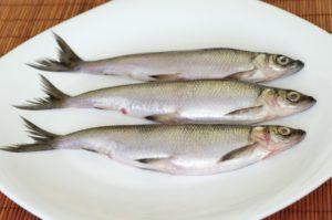 Ряпушка рыба вред и польза и вред