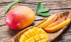 Манго польза и вред для организма калорийность