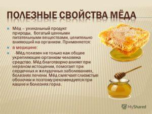 Мед польза и вред для организма человека