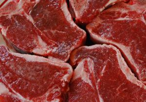 Мясо собаки вред и польза и вред