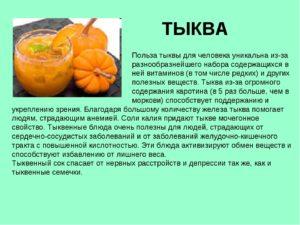 Тыква польза и вред для организма калорийность
