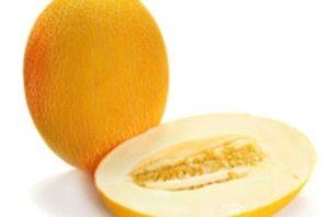 Дыня польза и вред для организма калорийность на 100 грамм