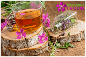 Чай из иван чая вред и польза и вред