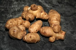 Земляная груша польза и вред для здоровья