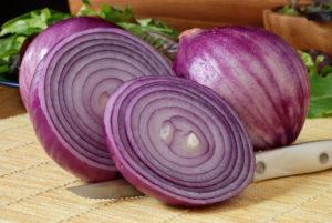 Фиолетовый лук польза и вред для здоровья