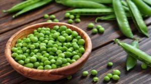 Горох зеленый польза и вред для организма