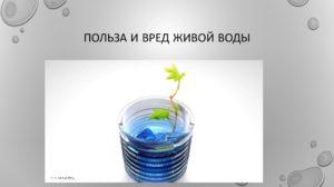 Мертвая и живая вода вред и польза и вред