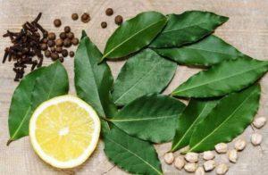 Напиток из лаврового листа польза и вред