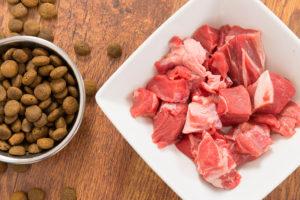 Сырое мясо для собак польза или вред
