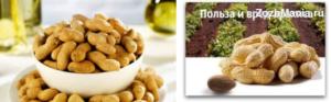 Арахис польза и вред для организма калорийность