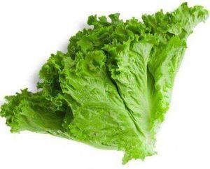 Зеленый салат польза и вред для здоровья