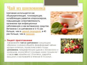 Чай из шиповника польза и вред для мужчин