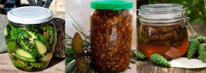 Настойка из зеленых шишек сосны на водке польза и вред