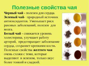 Зеленый чай и печень польза и вред