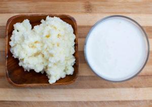 Молочные грибки для кефира польза и вред
