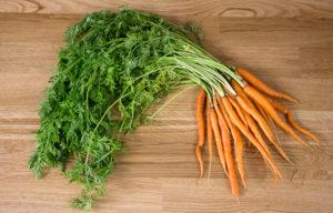 Ботва моркови польза и вред для организма