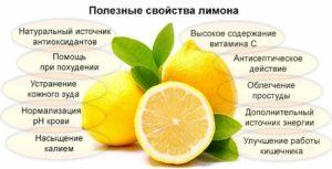 Лимон польза и вред для организма человека