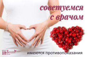 Брусника во время беременности польза и вред