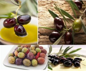 Оливки и маслины в чем разница польза и вред
