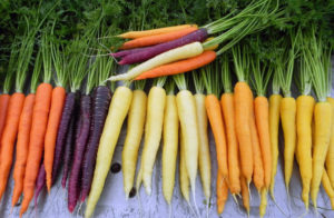 Морковь при сахарном диабете 2 типа польза и вред
