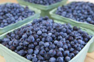 Голубика при диабете 2 типа польза и вред
