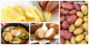 Жареная картошка польза и вред для организма