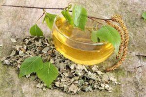 Листья березы вред и польза и вред
