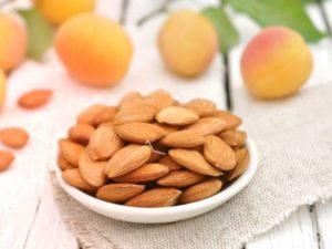 Орешки из абрикосовых косточек польза и вред