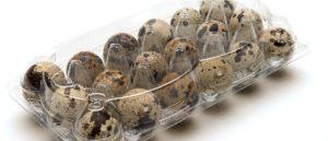 Яйцо перепелиное польза и вред для мужчин