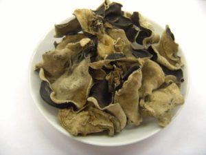 Древесные грибы вред и польза и вред