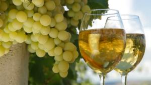 Виноматериалы что это такое вред и польза