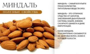 Миндальные орехи польза и вред для организма сколько нужно съесть