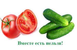 Огурцы помидоры вред и польза и вред