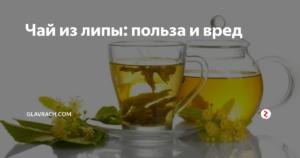 Липовый чай для женщин польза и вред