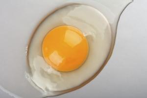 Сырые яйца при гастрите польза и вред