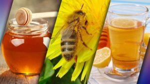 Вода с медом на ночь польза и вред