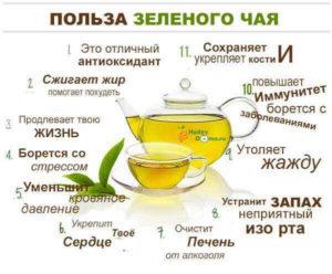 Зеленый чай польза и вред для печени