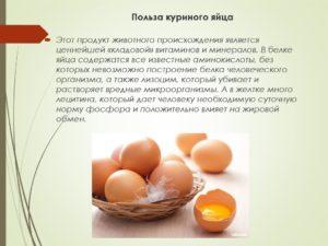 Яйца польза и вред для мужчин