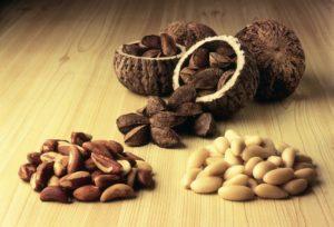 Бразильский орех польза и вред для организма человека