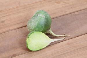 Зеленая редька польза и вред рецепты приготовления