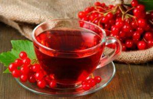 Чай из листьев калины польза и вред