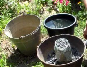 Угольная зола на огороде польза или вред