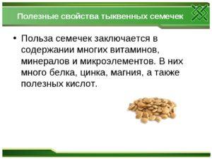 Семена тыквы польза и вред для организма